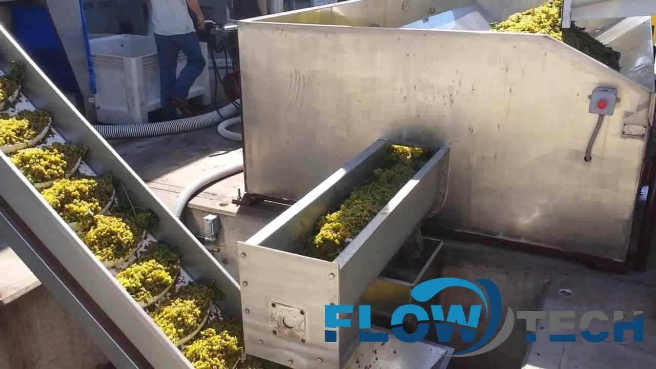 Конвейер для винограда