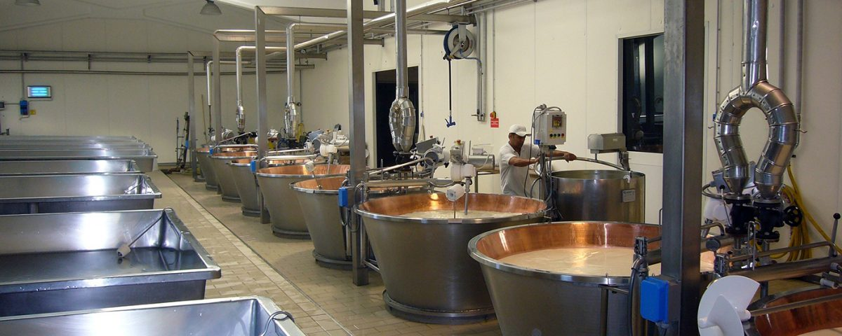 Equipment for the production of cheese